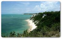 Imagem da Caatinga