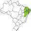 Icone de acesso à informações sobre a caatinga