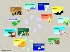 Agropecuária reúne os substantivos agricultura e pecuária. É portanto a área do setor primário responsável pela produção de bens de consumo, mediante o cultivo de plantas e da criação de animais como gado, suínos, aves entre outros.  </br></br>  Palavras-chave: Dimensão socioambiental. Dimensão econômica. Dimensão demográfica do espaço geográfico. Território. Lugar. Região. Eeconomia. Agropecuária. Agricultura. Plantio agrícola. Máquinas agrícolas. Economia. Pecuária. Gado de corte.