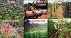 O desmatamento da floresta amazônica provoca problemas sérios ao meio ambiente, como a morte ou até mesmo a extinção de espécies da fauna e da flora. Um levantamento feito pelo Ministério do Meio Ambiente indica que 80% da madeira que sai da região é proveniente de exploração criminosa de terras públicas.  </br></br>  Palavras-chave: Dimensão socioambiental. Dimensão econômica do espaço geográfico. Território. Lugar. Região norte. Amazônia. Desmatamento. Floresta amazônica. Transporte de madeira.