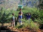 Mulher e filhos em Boroma, cidade próxima a Tete - Moçambique. </br></br> Palavras-chave: Boroma. África. Cotidiano. Trabalho. Crianças. Mulher.
