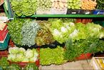 Hortaliças, legumes ou verduras são termos agrícolas e culinários que se referem a plantas ou suas partes, geralmente consumida por humanos como alimento, não sendo, contudo, consideradas hortaliças as frutas, os frutos secos, as especiarias e os grãos.  </br></br> Palavras-chave: Agricultura. Hortaliças. Legumes. Verduras. Frutas. Dimensão econômica da produção do e no espaço. Êxodo-rural. Agroindústrias.