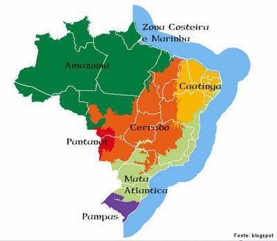 O Brasil tem seu território ocupado por seis grandes biomas terrestres compreendidos por: Amazônia, cujo domínio ocupa 49,29% do território nacional e que é constituída principalmente por Cerrado, cujo domínio ocupa 23,92% do território e que é constituído principalmente por savanas; Mata Atlântica, cujo domínio ocupa 13,04% do território nacional e que é constituída principalmente por Caatinga, cujo domínio ocupa 9,92% do território nacional e que é constituída principalmente por savana estépica; Pampa ou campos sulinos, cujo domínio ocupa 2,07% do território nacional e que é constituído principalmente por estepe e savana estépica; Pantanal, cujo domínio ocupa 1,76% do território nacional e que é constituído principalmente por savana estépica.</br></br>Palavras-chave: Bioma. Mapa. Brasil. Socioambiental. Biodiversidade. Clima. Vegetação. Espaço. Território. Relevo.
