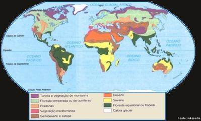 Mundo Vegetao  Disciplina  Geografia
