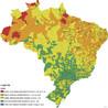O mapa acima apresenta o IDHM no Brasil no ano de 2010.<br><br>O que � o IDHM? O �ndice de Desenvolvimento Humano Municipal compreende indicadores de tr�s dimens�es do desenvolvimento humano: longevidade, educa��o e renda. O �ndice varia de 0 a 1. Quanto mais pr�ximo de 1, maior o desenvolvimento humano. <br><br>Apesar de ter sua metodologia baseada no c�lculo do IDH Global � publicado anualmente pela sede do PNUD em Nova York para mais de 150 pa�ses �, a compara��o entre IDHM e IDH n�o � poss�vel , j� que o IDHM � uma adapta��o metodol�gica do IDH ao n�vel  municipal, utilizando outra base de dados (neste caso, os Censos do IBGE). Ambos agregam as dimens�es longevidade, educa��o e renda, mas com diferentes indicadores e base de dados para retratar estas  dimens�es. <a target=&quot;_blank&quot; href=&quot;http://www.geografia.seed.pr.gov.br/arquivos/File/diferenca_idh_idhm.pdf&quot;>Saiba mais</a>.<br><br>Em 2010, o IDHM no Brasil foi considerado <strong>Alto</strong> (0,727) com 33,9% dos munic�pios brasileiros nesta faixa de desenvolvimento humano.<br><br>O IDHM do Brasil: cresceu 47,5% entre 1991 e 2010: a classifica��o do IDHM do Brasil mudou de <strong>Muito Baixo</strong> (0,493 em 1991) para <strong>Alto</strong> Desenvolvimento Humano (0,727 em 2010) - Com redu��o das disparidades entre Norte (N, NE) e Sul (S, SE e CO); Com melhora acentuada dos munic�pios que tinham posi��es menores de IDHM; Com avan�o consistente ao longo dos 20 anos. </br></br> As faixas de desenvolvimento humano s�o calculadas tendo como base o �ndice de Desenvolvimento Humano (IDHM) dos 5.565 munic�pios pesquisados pelo Censo do IBGE.</br></br>Palavras-chave: IDHM. Brasil. Natalidade. Educa��o. Esperan�a de vida. Popula��o. Desigualdade social. Pobreza. Sal�rio. IBGE. Censo demogr�fico. Munic�pios.