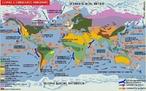 Correntes mar�timas s�o deslocamentos de massas de �gua oce�nicas geradas pela in�rcia de rota��o do planeta e pelos ventos. As correntes se movimentam por todos os oceanos do mundo, transportando calor e por isso apresentam influ�ncia direta na pesca, vida marinha e no clima. As principais correntes mar�timas da Terra s�o conhecidas como, por exemplo, a Corrente do Golfo, Corrente do Brasil, Correntes de Humbolt, entre outras. </br></br> Palavras-chave: Correntes Mar�timas. Oceanos. Clima. Pesca. Temperatura. Salinidade.