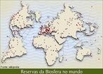 Biosfera � o conjunto de todos os ecossistemas da Terra. � um conceito da Ecologia, relacionado com os conceitos de litosfera, hidrosfera e atmosfera. Incluem-se na biosfera todos os organismos vivos que vivem no planeta, embora o conceito seja geralmente alargado para incluir tamb�m os seus habitats. </br></br> Palavras-chave: Dimens�o Socioambiental. Dimens�o Econ�mica. Floresta. Vegeta��o do Brasil. Mapa. Bioma. Biota. Ecossistema. Biodiversidade. Fauna. Biopirataria. Lugar. Territ�rio. Regi�o. Sociedade.