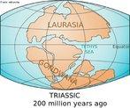 A ruptura do Pang�ia come�ou h� cerca de 200 milh�es de anos, no final do per�odo Tri�ssico. O hemisf�rio Norte ficou definido como Laur�sia e o Hemisf�rio Sul, como Gondwana. </br></br> Palavras-chave: Deriva Continental. Placas Tect�nicas. Continentes. Per�odos. Laur�sia. Gondwana.