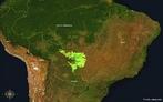 O Complexo do Pantanal � um ecossistema com 250.000 km� de extens�o, situado ao sul de Mato Grosso e no noroeste de Mato Grosso do Sul, ambos Estados do Brasil. Engloba tamb�m o norte do Paraguai e leste da Bol�via (que � chamado de chaco boliviano), considerado pela Unesco Patrim�nio Natural Mundial e Reserva da Biosfera. </br></br> Palavras-chave: Pantanal. Ecossistemas. Biomas. Pecu�ria. Agricultura. Animais. Biomas. Biodiversidade. Imagem de Sat�lite.