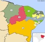 A Regi�o Nordeste � uma regi�o do Brasil com 1.558.196 km� de �rea. �, curiosamente, um pouco maior que o estado do Amazonas, com cerca de 1.577.000 km�, e � a terceira regi�o em �rea. </br></br> Palavras-chave: Brasil. Regi�o Nordeste. Turismo. Economia.