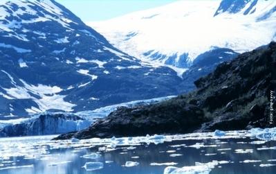 O Ártico, ou Região Ártica, é geralmente definido como aquele onde a temperatura média do mês mais quente é inferior a 10°C na região setentrional do planeta Terra. </br></br>Na região ártica se encontra o Oceano Ártico e o Polo Norte e essa região se encontra praticamente toda inscrita no Círculo Polar Ártico. Durante o inverno a área toda é coberta pelo gelo e a temperatura atinge geralmente - 60°C. Durante o verão a tundra é a vegetação principal, mas nas áreas mais aquecidas pode se encontrar salgueiros e bétulas.</br></br> Animais: ursos-polares, focas árticas e bois-almiscarados. </br></br> Palavras-chave: Geleiras. Aquecimento Global. Extinção de Animais. Urso Polar. Animal Marinho. Polo Norte.