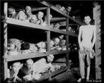 """Com a ascensão do nazismo em 1933, o mundo assistiria por mais de uma década ao maior genocídio do século XX. De início os nazistas preocuparam-se com a depuração dos 600 mil judeus alemães. A ação dos Einsatzengruppen (esquadras móveis de assassinos das SS nazistas) e a estratégia da """"Solução Final"""" concebida por Reinhard Heydrich, das SS, decidida no subúrbio de Wannsee, Berlim, em janeiro de 1942, com ou sem autorização direta de Hitler, matou entre cinco a seis milhões de judeus. Também foram vítimas dos alemães os ciganos e outras minorias religiosas (Testemunhas de Jeová). </br></br> Palavras-chave: Genocídio. Holocausto. Alemanha. Nazismo. Guerra. Política. Poder."""