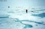 O Polo Norte é a região que se localiza no extremo Norte do planeta. É o lugar onde o eixo imaginário, diferente do eixo de rotação do planeta, corta a superfície. O Polo Norte terrestre está situado no Oceano Glacial Ártico, onde o mar está coberto por uma camada de gelo. Aí se distinguem quatro polos: o magnético, o geográfico, o geomagnético e o histórico. </br></br>  Palavras-chave: Polo Norte. Boreal. Ártico. Localização.