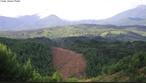 O termo reflorestamento tem sido utilizado para todo o tipo de implantação de florestas, porém não é correto falar em reflorestamento em uma área que nunca foi coberta por floresta.  </br></br>  Palavras-chave: Dimensão Socioambiental. Econômica. Demográfica. Território. Natureza. Região. Lugar. Reflorestamento. Floresta. Economia. Papel. Silvicultura.