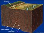É um movimento brusco e repentino do terreno, resultante de um falhamento. Portanto, a ruptura da rocha é o mecanismo pelo qual o terremoto é produzido. A quase totalidade dos terremotos têm origem tectônica, isto é, estão associados a falhamentos geológicos. Entretanto, terremotos podem ser também ocasionados por atividades vulcânicas ou pela própria ação do homem. </br></br> Palavras-chave: Falhamento. Terremoto. Rochas. Atividades Vulcânicas. Placas Tectônicas.