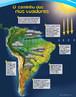"""Os rios voadores são """"cursos de água atmosféricos"""",  formados por massas de ar carregadas de vapor de água, muitas vezes acompanhados por nuvens, e são propelidos pelos ventos. Essas correntes de ar invisíveis passam em cima das nossas cabeças carregando umidade da Bacia Amazônica para o Centro-Oeste, Sudeste e Sul do Brasil. O diagrama mostra os caminhos dos rios voadores. </br></br>Palavras-chave: Rios voadores. Desmatamento. Floresta Amazônica. Água. Seca."""