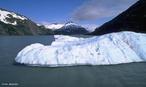"""<em>Iceberg</em> (do inglês ice = """"gelo"""" + sueco berg = """"montanha"""") é um enorme bloco ou massa de gelo que se desprende das geleiras existentes nos calotas polares, originárias da era glacial, há mais de cinco mil anos. </br></br> Palavras-chave: Frio. Clima Polar. Neve. Gelo. Aquecimento Global. Continente."""