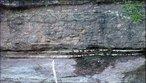 A Formação Tatuí é composta principalmente de arenitos e siltitos. Estes representam o início da sedimentação pós-glacial que ocorreu no Permiano (FULFARO op. cit.), formada em ambiente costeiro e de mar aberto raso (IPT, 1981), como barras litorâneas e plataformais, em sistemas flúvio-deltaicos, e localmente em cunhas clásticas do tipo fan deltas (FULFARO op. cit.), existentes na porção Noroeste da Bacia do Paraná, como parte da sequência sedimentar superior do Grupo Tubarão. </br></br> Palavras-chave: Dimensão Socioambiental. Território. Rochas. Formação Tatuí. Afloramento. Basalto.