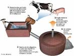 Biodigestor anaeróbico é um equipamento usado para a produção de biogás, uma mistura de gases – principalmente metano. </br></br> Palavras-chave: Biogás. Metano. Meio ambiente. Energia.