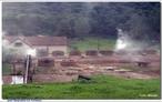 Carvoaria - queima da lenha para produção do carvão. </br></br> Palavras-chave: Desmatamento. Carvão Vegetal. Floresta. Biodiversidade. Meio ambiente. Economia.