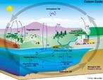 O carbono é o elemento químico fundamental dos compostos orgânicos, cujo ciclo consiste na assimilação (fixação) dos átomos contidos nas moléculas simples de gás carbônico presente na atmosfera (CO2), e convertidos em substâncias mais elaboradas (carboidratos, proteínas), a partir do metabolismo fotossintético realizado pelos organismos autotróficos.  </br></br>  Palavras-chave: Território. Lugar. Espaço. Ciclo do Carbono. Atmosfera.