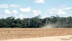O desmatamento da floresta amazônica provoca problemas sérios ao meio ambiente, como a morte ou até mesmo a extinção de espécies da fauna e da flora. Um levantamento feito pelo Ministério do Meio Ambiente indica que 80% da madeira que sai da região é proveniente de exploração criminosa de terras públicas.  </br></br>  Palavras-chave: Dimensão Socioambiental. Econômica do Espaço Geográfico. Território. Lugar. Região. Região Norte. Amazônia. Desmatamento. Floresta Amazônica. Fauna. Flora. Queimadas.