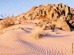 Deserto é uma região em que ocorre pouca quantidade de chuva. Em virtude desta situação climática, a umidade é muito baixa e pouca vegetação se desenvolve. Nestas condições, a vida torna-se complicada para seres humanos e outras espécies animais. </br></br> Palavras-chave: Bioma. Deserto. Chuva. Vegetação. Clima. Umidade.