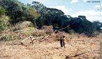O desmatamento da floresta amaz�nica provoca problemas s�rios ao meio ambiente, como a morte ou at� mesmo a extin��o de esp�cies da fauna e da flora. Um levantamento feito pelo Minist�rio do Meio Ambiente indica que 80% da madeira que sai da regi�o � proveniente de explora��o criminosa de terras p�blicas. </br></br> Palavras-chave: Dimens�o Socioambiental. Econ�mica do Espa�o Geogr�fico. Territ�rio. Lugar. Regi�o. Regi�o Norte. Amaz�nia. Desmatamento. Floresta amaz�nica. Fauna. Flora. Queimadas.