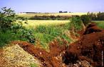 A eros�o � um processo que faz com que as part�culas do solo sejam desprendidas e transportadas pela �gua, vento ou pelas atividades do homem. O controle da eros�o � fundamental para a preserva��o do meio ambiente, pois o processo erosivo faz com que o solo perca suas propriedades nutritivas, impossibilitando o crescimento de vegeta��o no terreno atingido e causando s�rio desequil�brio ecol�gico. </br></br> Palavras-chave: Eros�o. Solo. Desequil�brio ecol�gico. Meio Ambiente. Desmatamento. Deposi��o de Sedimentos. Assoreamento.