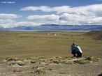 A peculiaridade climática faz da Patagônia um lugar muito especial. Os fortes ventos provenientes do Pacífico carregam umidade que provoca chuva nas montanhas da Patagônia chilena. Quando chega do lado argentino, o vento vem com pouca umidade, tornando as estepes patagônicas semi-áridas, com temperaturas anuais mais amenas. Os guanacos (mamífero ruminante) são típicos dessa região. </br></br> Palavras-chave: Estepes. Patagônia. Guanacos. Umidade. Chuva. Ventos.