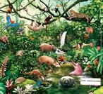 Fauna é o termo coletivo para a vida animal de uma determinada região ou período de tempo. O termo correspondente para plantas é flora. Flora, fauna e outras formas de vida como os fungos são coletivamente chamados de biota. </br></br> Palavras-chave: Dimensão Socioambiental. Território. Lugar. Região. Floresta. Brasil. Biodiversidade. Aves. Fauna. Animais. Extinção.