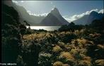 A Nova Zel�ndia (<em>Aotearoa</em> em Maori) � um pa�s de clima temperado, localizado no sudoeste do Oceano Pac�fico, considerado como parte da Polin�sia, faz parte da Oceania. A sua capital � a cidade de Wellington. </br></br> Palavras-chave: Nova Zel�ndia. Paisagem. Territ�rio. Pa�s. Lugar. Natureza. Dimens�o Socioambiental.
